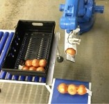 Pacepacker's Blu-Robot pick and place systems can handle a range of items