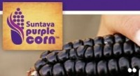 Suntava secures Non-GMO Project certification for its antioxidant-packed purple corn