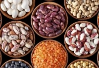 Beans, seeds and pulses are tipped to continue to grow in relevance and appeal. Photo: iStock - AndreyGorulko
